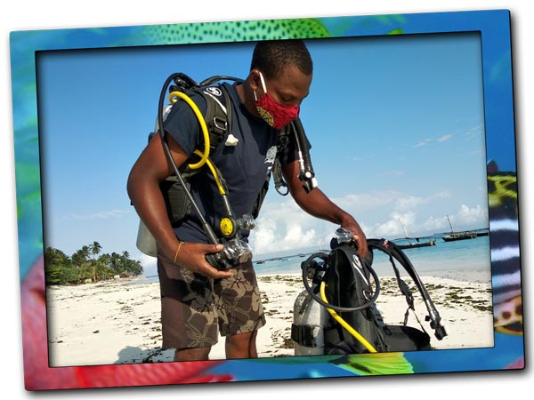 Our base at Nungwi Beach is the central starting point for your excursions to the best dive sites in Zanzibar Island. From here ocean lovers have a choice to visit the amazing spots in the marine reserve of Mnemba Island, Tumbatu Island, Nungwi Reef and Leven Bank · We offer daily scuba diving excursions from Nungwi to the best spots in Zanzibar Island · Local expert · Personalised diving · Small groups · Exclusive underwater experience.